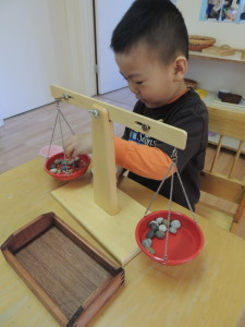 Children love science scale weighing